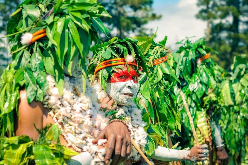 有叶子的妇女在巴布亚新几内亚 库存图片