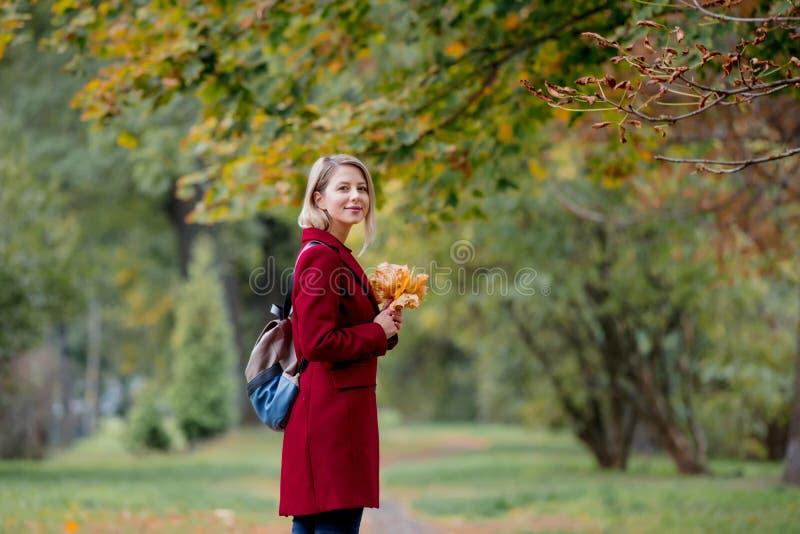 有叶子的年轻样式女孩在公园胡同 免版税图库摄影