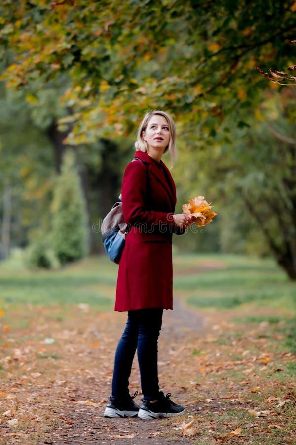 有叶子的年轻样式女孩在公园胡同 库存图片
