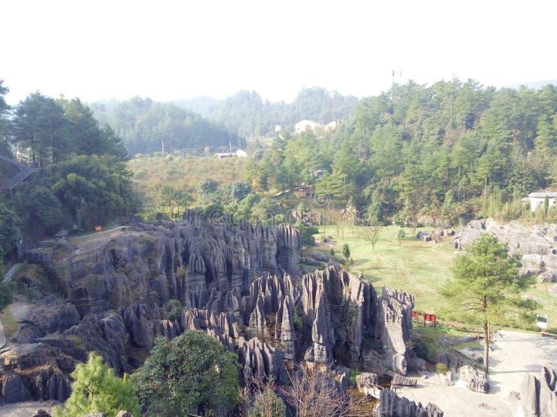 有各种各样奇怪的石头在石森林里 免版税库存照片