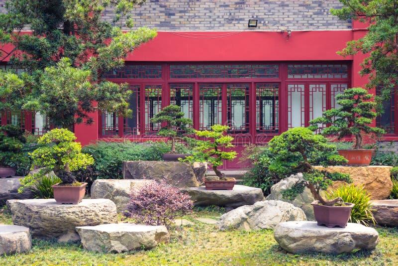 有各种各样的盆景树的庭院在亚洲 图库摄影