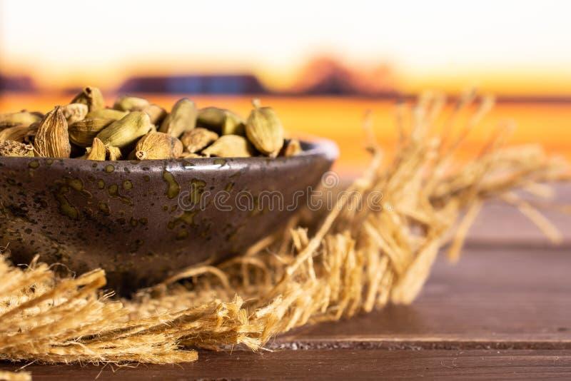 有后边秋天领域的真实的豆蔻果实荚 免版税库存图片