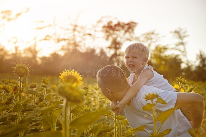 有后面的走在开花的向日葵的一个绿色领域的儿子的愉快的父亲在日落 免版税库存照片