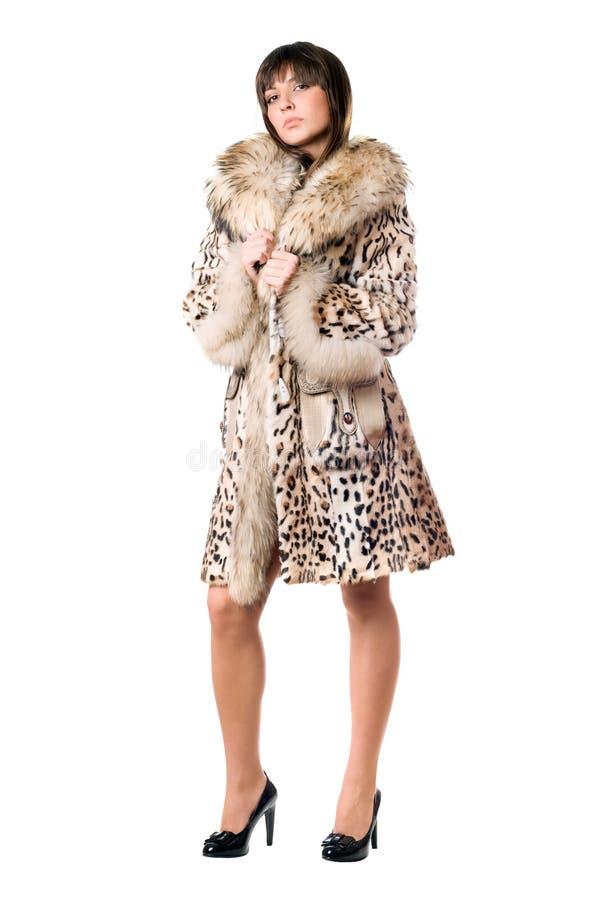 有吸引力的外套夫人豹子 图库摄影