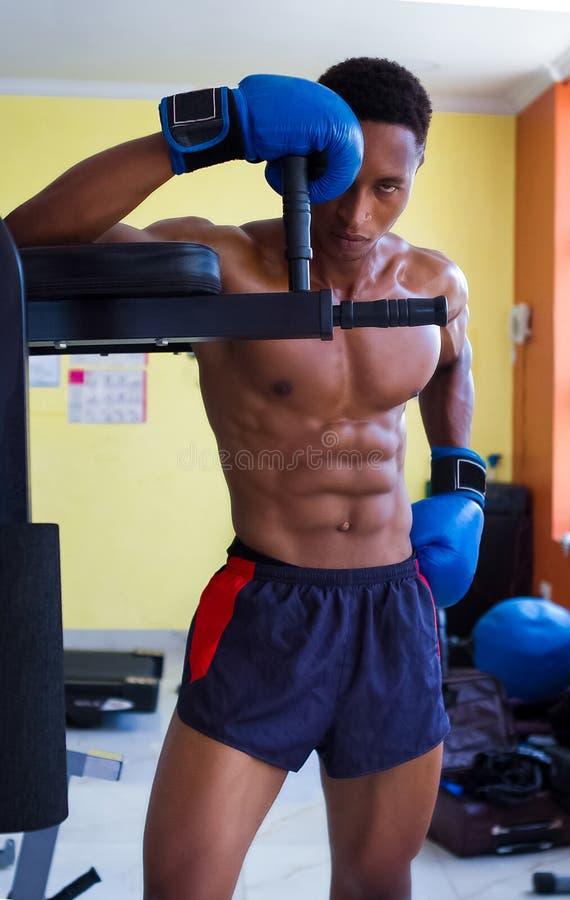有吸引力的年轻男性拳击手身分和看卑鄙 适合的男性式样拳击手佩带的拳击手套 免版税库存图片