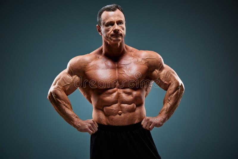 有吸引力的男性身体建造者的躯干在灰色背景的 库存图片