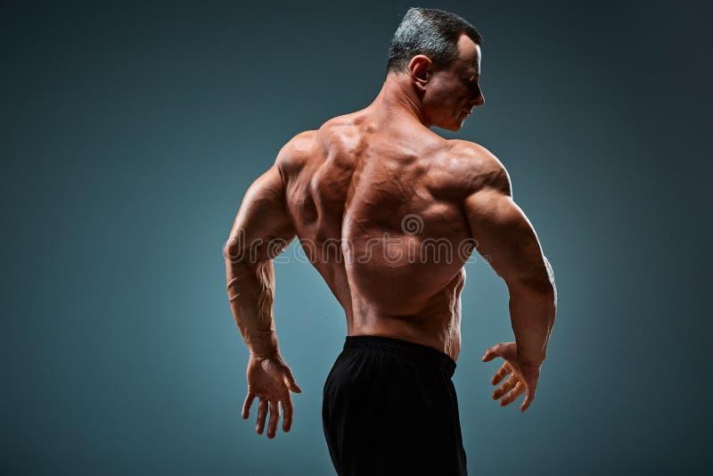 有吸引力的男性身体建造者的躯干在灰色背景的 免版税库存照片