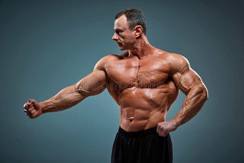 有吸引力的男性身体建造者的躯干在灰色背景的 免版税图库摄影