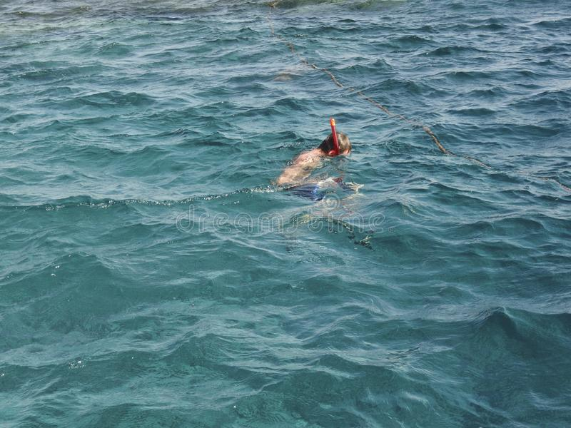 有和废气管的游泳者参与snrkelling面具在红色海审查水下的世界 图库摄影