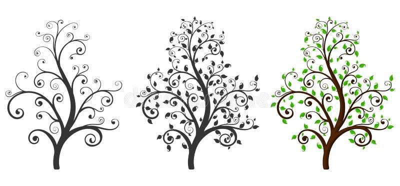 有和没有叶子的decoratives树.图片