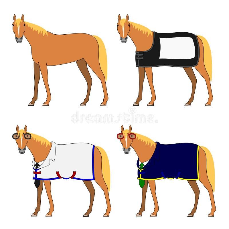 有和没有布料的四匹马 免版税库存照片