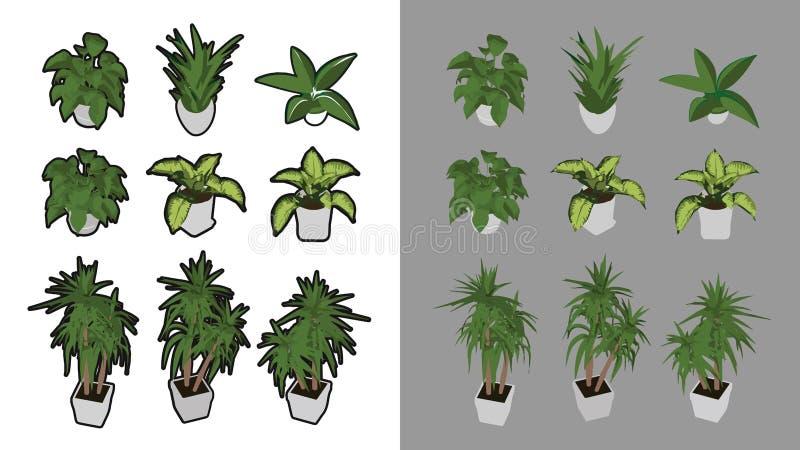 有和没有黑概述的9等量室内植物 皇族释放例证