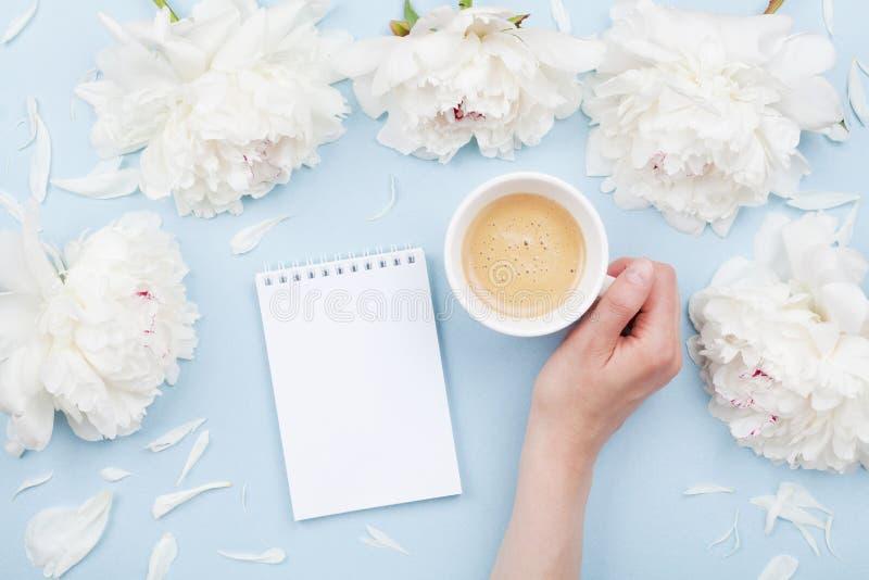 有咖啡的妇女手、开放笔记本和美丽的白色牡丹花在淡色桌上 舒适早餐舱内甲板位置 免版税图库摄影