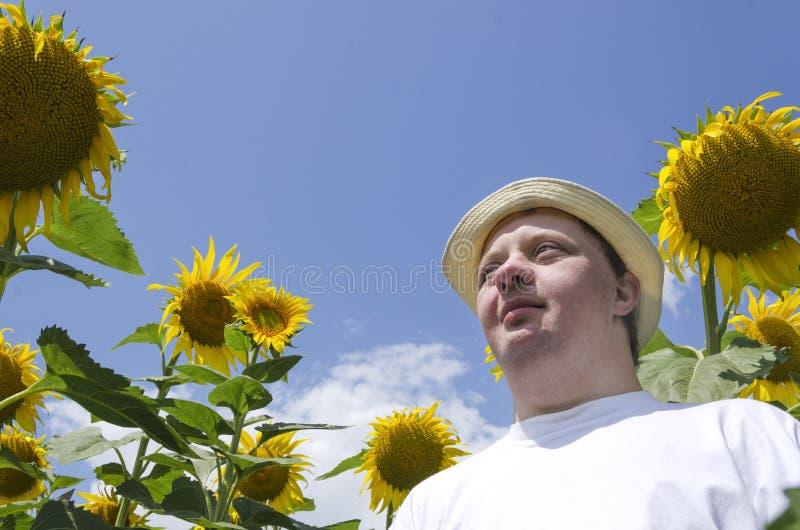 有唐氏综合症的在向日葵中,明亮的天空蔚蓝成人人 图库摄影