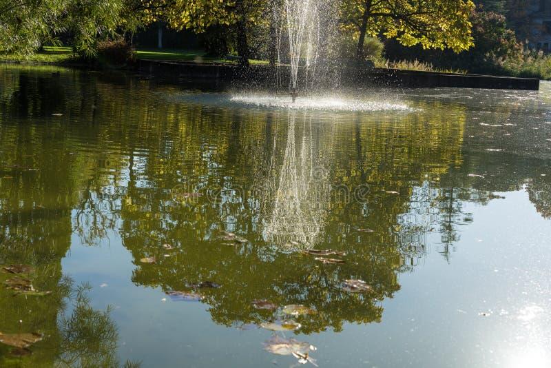 有喷泉的池塘在公园 图库摄影