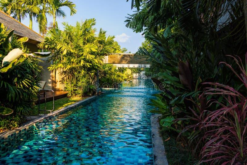 有喷泉的空,长的游泳场,围拢由棕榈树在热带密林 免版税库存图片
