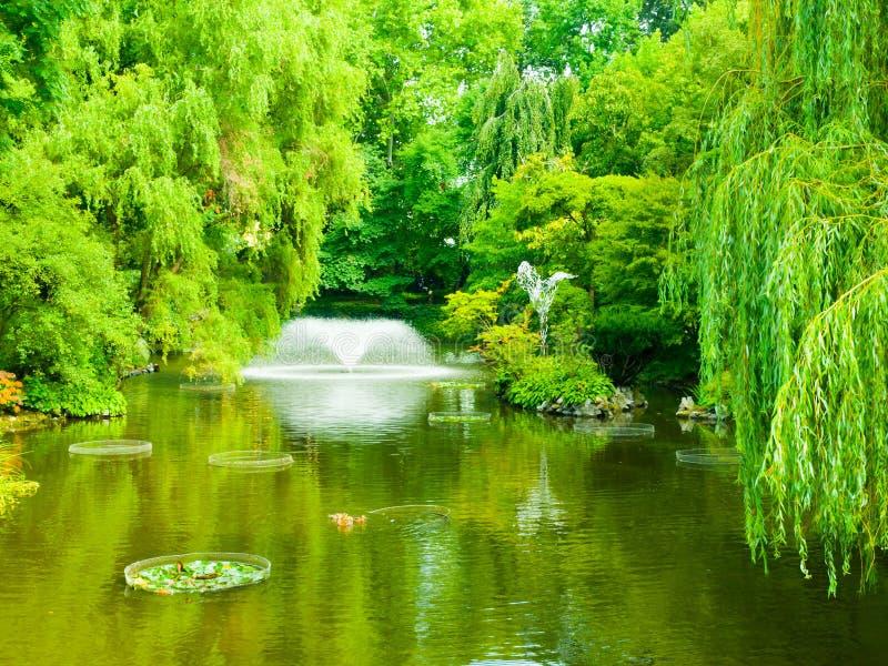 有喷泉的Garden湖 免版税库存照片
