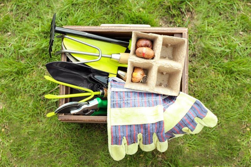 有园艺工具和装饰灯泡的木板箱在绿草 库存图片