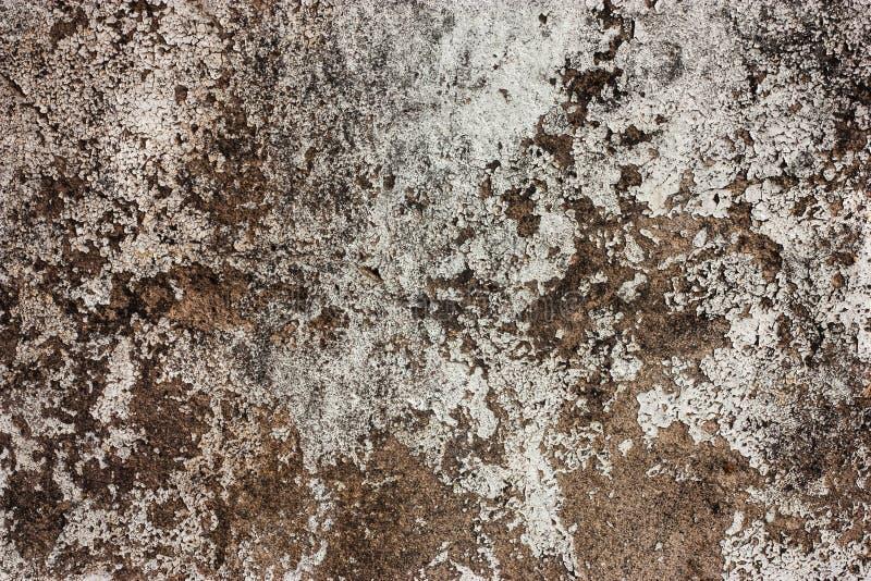 有土的织地不很细墙壁 免版税图库摄影