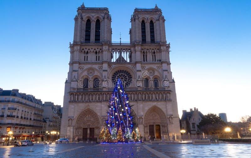 有圣诞树的-巴黎,法国巴黎圣母院 免版税库存图片