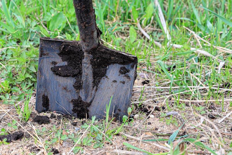有在地面和沙子困住的丛的一把黑钢铁锹地球 库存照片