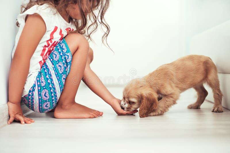 有在家使用的小犬座的孩子 与puppie的女孩戏剧 免版税库存照片