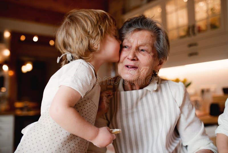有在家做蛋糕的小小孩男孩的资深祖母,亲吻 免版税库存照片