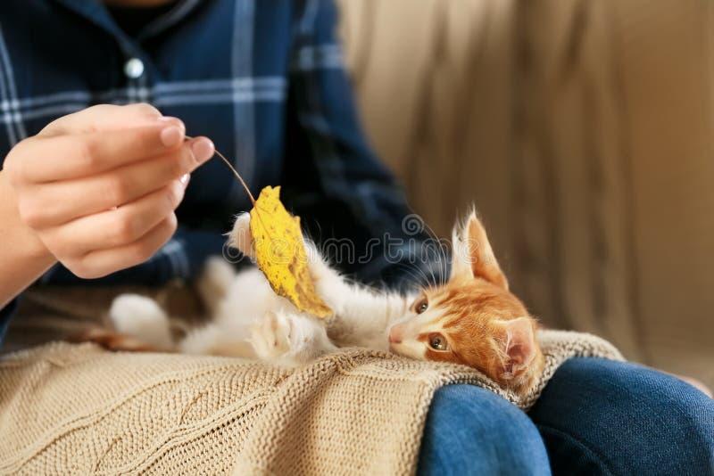 有在家逗人喜爱的小猫的妇女,特写镜头 免版税库存照片