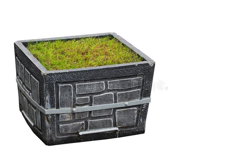 有在白色隔绝的绿草的灰色街道石头大农场主箱子 图库摄影
