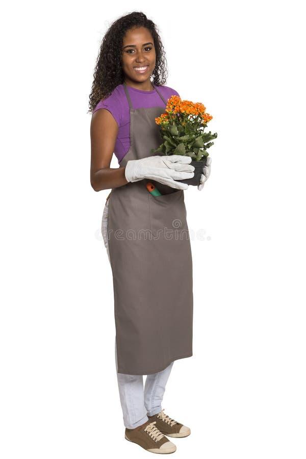 有在白色ba隔绝的花的美丽的非洲女孩花匠 库存照片