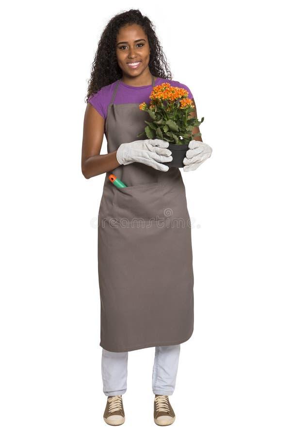 有在白色ba隔绝的花的美丽的非洲女孩花匠 免版税库存图片