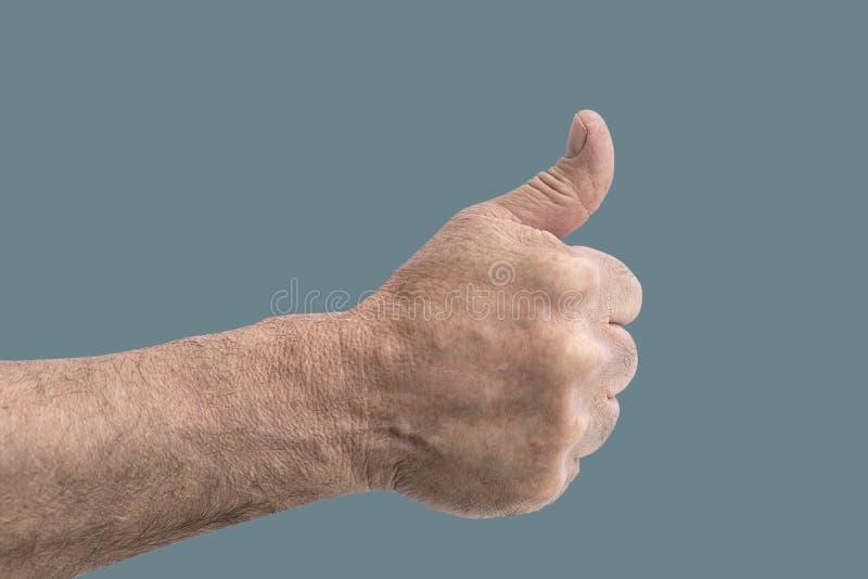 有在绿色淡色隔绝的拇指的人拳头 免版税库存图片
