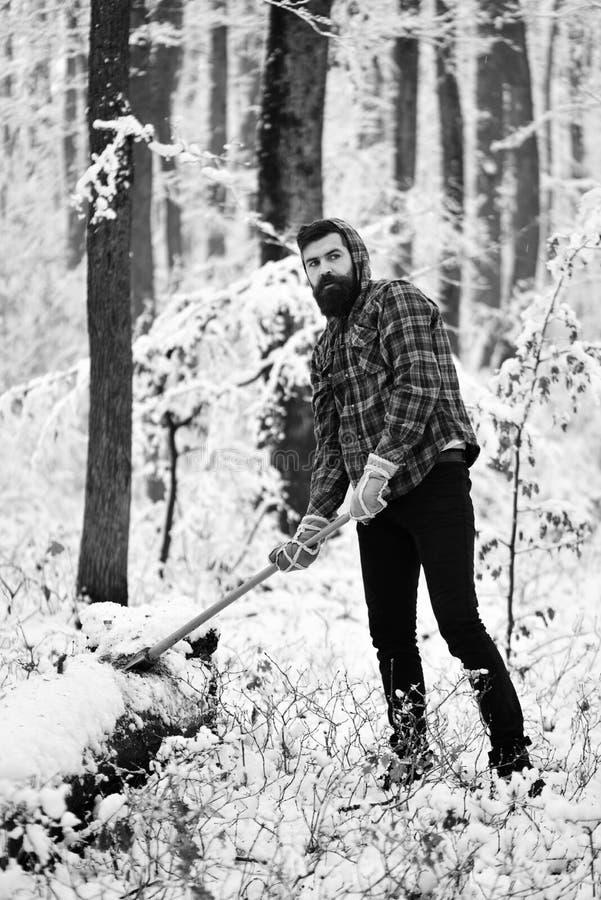有在背景的雪盖的树的住在森林并熟悉森林的人 库存照片