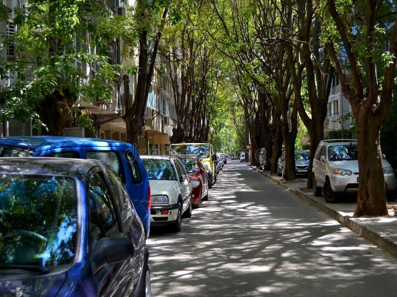 有在路旁停放的汽车的狭窄的城市街道在绿色树机盖下充斥与夏天下午阳光 库存图片