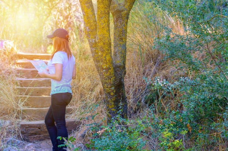 有地图和帽子身分的妇女游人在令人惊讶的森林、自由和活跃lifstyle里 免版税库存照片