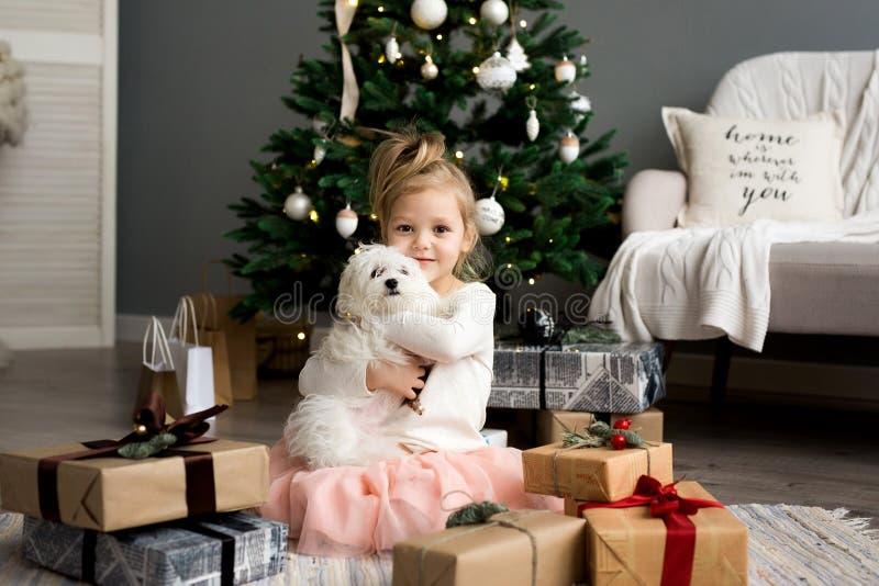 有坐在圣诞树附近的狗的美丽的女孩 快活的圣诞节节日快乐 免版税库存图片