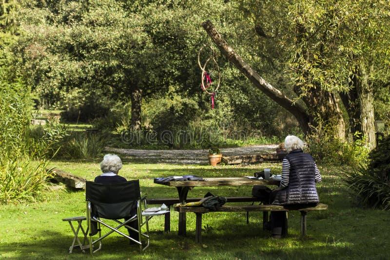 有坐在树荫下的灰色卷发的两个领抚恤金者 图库摄影