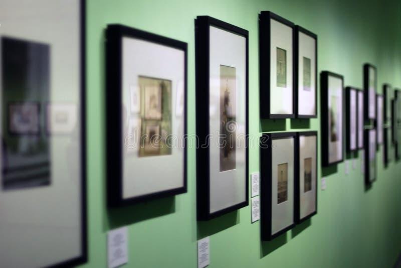 有垂悬在美术馆的绿色墙壁上的葡萄酒照片的许多相框 库存图片