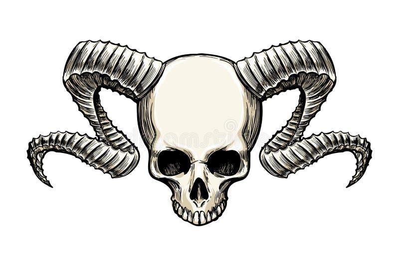 有垫铁的头骨 向量例证