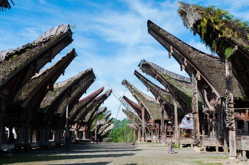 有塔娜当地和传统议院的村庄  库存图片