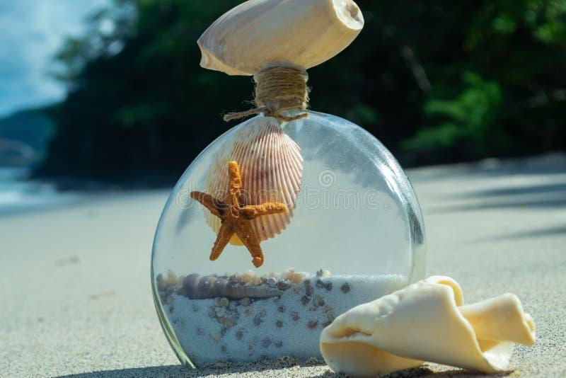 有壳的在一个美丽的海滩的瓶和海星 免版税库存照片