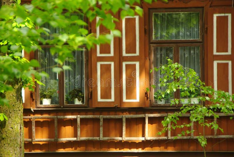 有外部快门和一架木梯子的老木墙壁 免版税图库摄影