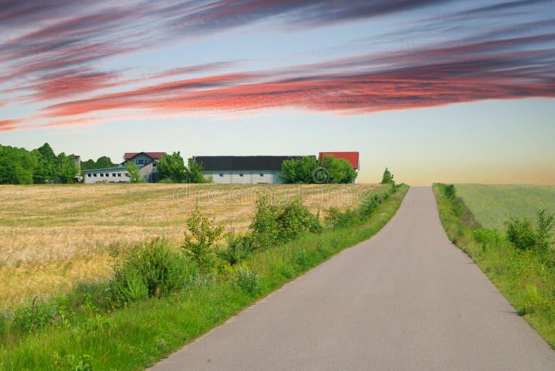 有多云天空的乡下公路在欧洲 免版税库存图片