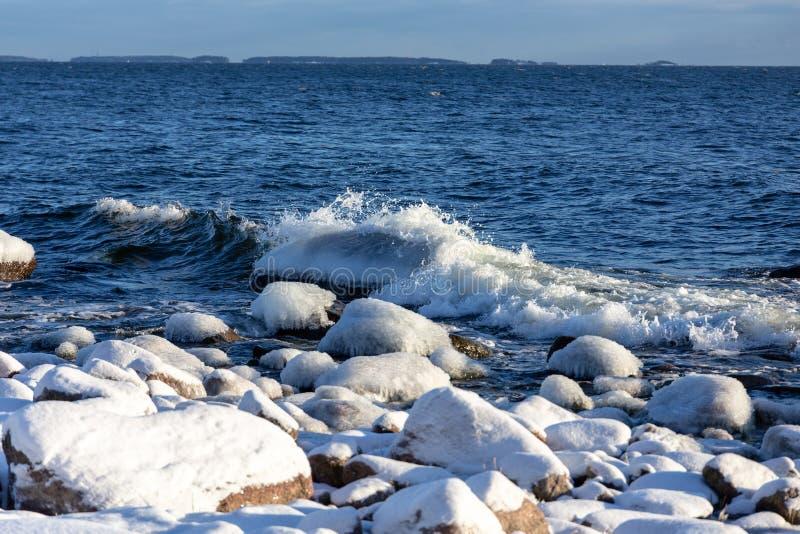 有多雪的岸的冻海在芬兰 击中海岸的冬天波浪在一结冰的冷的好日子 免版税图库摄影