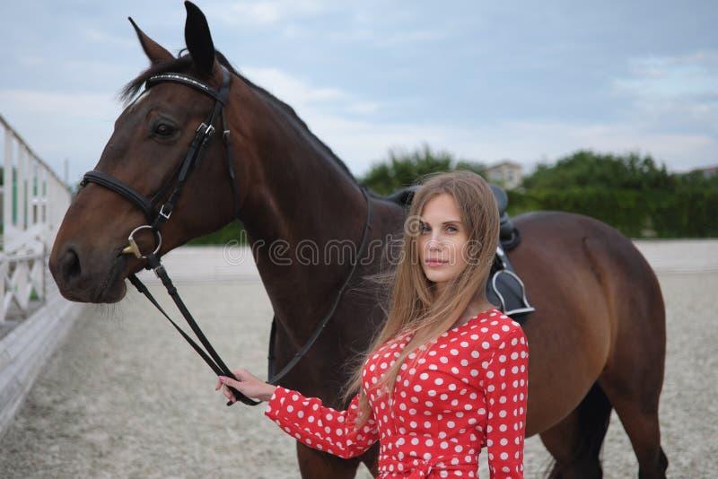 有大乳房的美丽和性感的金发碧眼的女人在一件红色礼服和棕色衣服马  库存图片