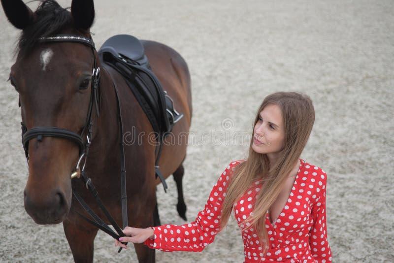 有大乳房的美丽和性感的金发碧眼的女人在一件红色礼服和棕色衣服马  免版税库存图片