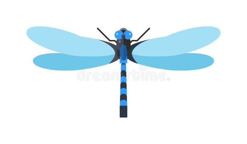有大眼睛自然昆虫动物野生生物传染媒介例证的蜻蜓anax imperator男性蓝色皇帝 库存例证