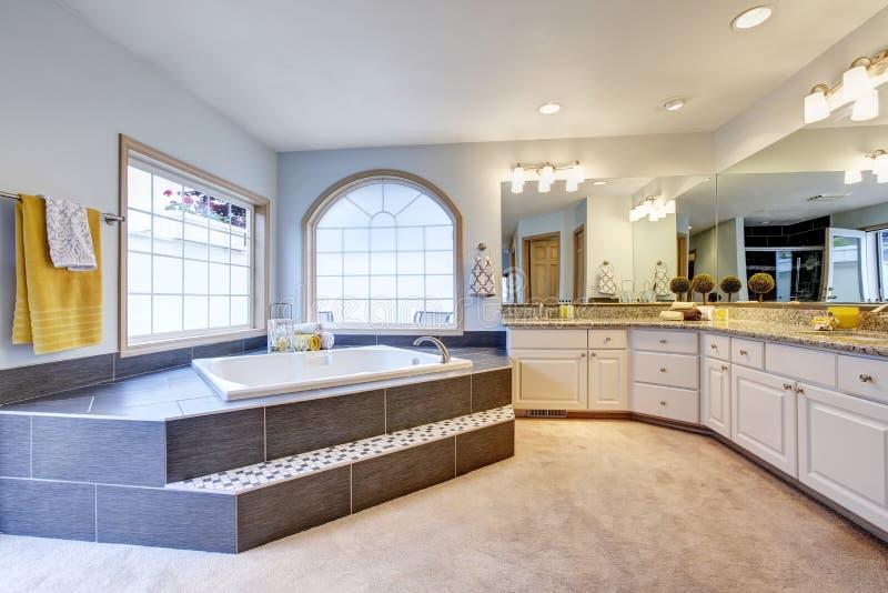 有大镜子、长的柜台和豪华浴缸的主要卫生间 免版税库存图片