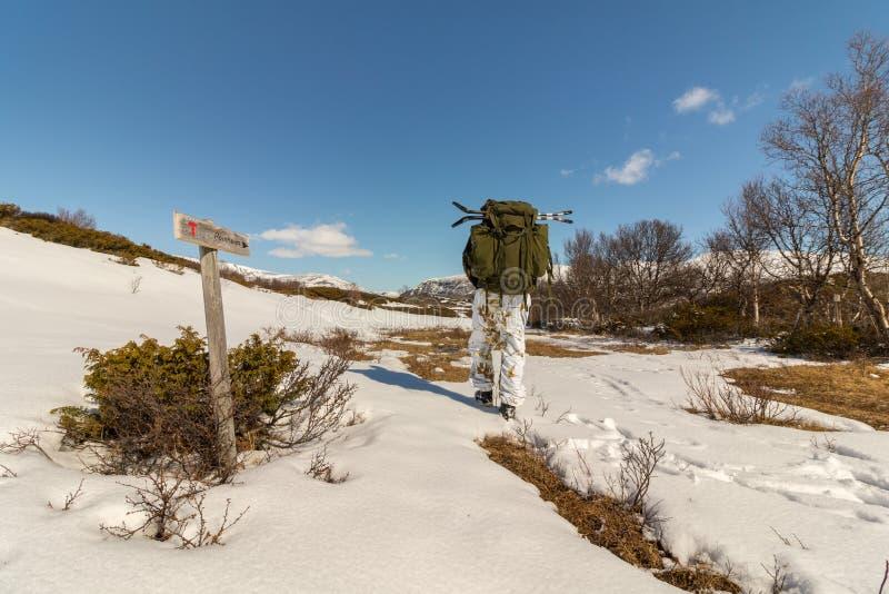 有大雪靴的人在他的背包,从后面看见的人,走往Dovre山的赖恩海姆在挪威 图库摄影