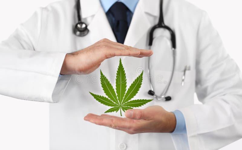 有大麻标志医疗概念的医生手 免版税库存照片
